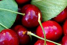 Cherries plants