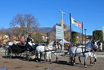 Festes de Sant Antoni Abat 2014 / Algunes fotos dels carruatges amb què hem desfilat aquest any als Tres Tombs del nostre poble, Sant Esteve de Palautordera i també de Vilanova i la Geltrú.