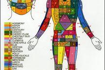 benessere e salute