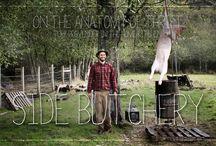 bukkejegeren / Hjort, jakt og natur.