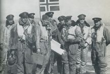 333 (n) squadron