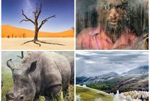 concurso national geographic 2015