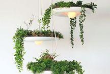 Luminaire vegetal