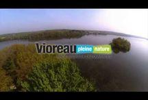 Lac de Vioreau