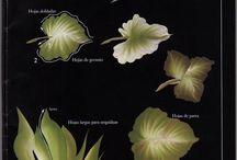 foglie diverse