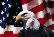 American Patriot / by Deborah Lyons Diaz