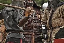 Knights / ...in shining armor.