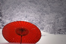 japanese parasols / by Becky Voss Sitter