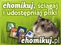 darek385 / Chomikuj .pl