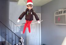 Holidays / Elf on the shelf