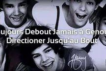 One Direction / Ce tableau aura des photos que des One Direction