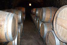 Vins et vignobles / Le vignoble de la Vallée du Loir en Vendômois produit notamment un vin rosé curieusement appelé «gris ». Issu du Pineau d'Aunis (un cépage rouge à jus clair), le Gris a une robe très pâle et exprime un vin d'une grande finesse aux arômes poivrés.    Depuis 2001, les vignobles des Coteaux du Vendômois sont classés en AOC (Appellation d'Origine Contrôlée).