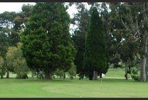 Australia Par 3 and Executive Golf Courses / Australia Par 3 and Executive Golf Courses