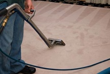 Carpet Cleaning Boston / Carpets are an extremely preferred floor choice for properties due to the fact that they're warm as well as soft and make the whole family members feel appreciated as well as at home. Tidy carpets and rugs are main to this feeling, and also vacuuming, also as often as once a week, isn't enough to maintain carpets really cleanse via the using tasks of the day.