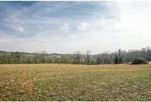 Franklin Township, Chester County, PA / Glorious opportunity to own land with all but 13 acres under Conservation Easement. Consists of beautiful gently rolling ground, views and access to White Clay Creek, woodlands and valleys. The home site offers high long views of the surrounding land. Paved drive in place. The property views of other eased farms are beautiful, the riding superb and yet you are still close to amenities and travel corridors. 56 Acres. MLS# 6513331