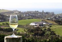 Sommelier Tours with Sawyer / Pure Luxury specialized tours with your sommelier host Christopher Sawyer in beautiful Northern California Wine Country.