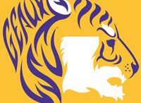 LSU Saints Love / by Lisa Lott