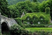 Dreamy Homes