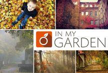 Jesień w Polsce / Są to zdjęcia zebrane w naszym konkursie :)