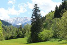 Deutchland Land