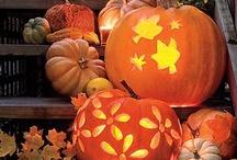 I Adore Autumn