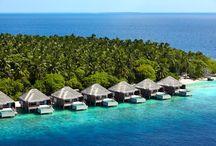 Dusit Thani Maldives / Leading Maldives Luxury Resorts