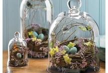 home decoration spring