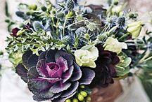 FLORAL TRENDS - Unusual Blooms