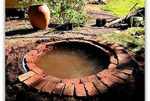 water in a garden