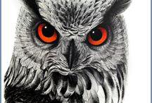 Tatts - owls