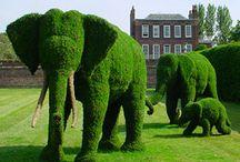 Great gardens