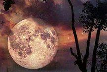 νυχτα