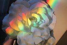 ༓ rainbow ༓