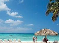 Cayman Islands News - Cayman Villas