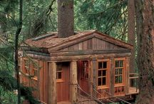 Treehouses / I always wanted a treehouse when I was little. Solution? One of my fictional characters has a treehouse in What the Girl Knew. Here are some possibilities. Find out more about this novel at http://careyjaneclark.com/writing/work-progress/