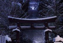 Do you love Japan?