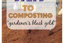 Gardening / by kelsey nissley
