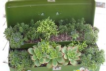 Hage & planter