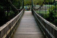 Dilworth/Freedom Park