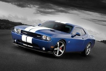 Muscle Cars / I love American muscle cars