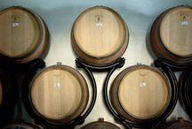 """La Torre Vineyards / """"La Torre"""" Vineyards pictures for Lucca Wine Treasures"""