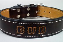 Leather Dog Collars & Leashes / Personalized leather dog collars are beautifully crafted with traditional leather craft methods.  Rugged leather dog collars are great for large breed dogs.  Even leather dog leashes and leads can be customized.
