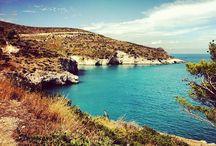 Gargano..Puglia da scoprire / Gargano è il nome di quello in cui siamo immersi. Storia, tradizione, musica, sapori, colori ... unici nella regione Puglia