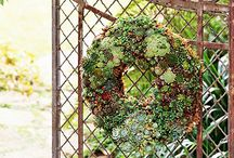 Garden Project ideas / by Barbara Wagner-Page