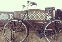Collections ~ Bicycle Built For 2 ~