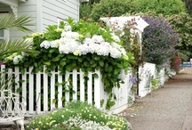 Yes, I Want the White Picket Fence! / by Cheri Bonnett Greenwood