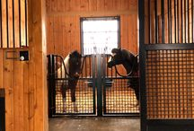 Miniature Horse Stables