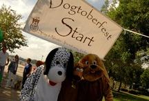 Dogtoberfest 2012 / Our fundraiser Dogtoberfest at beautiful Met Park in Jacksonville, FL!