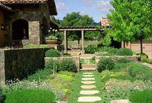 Garden / by Daisy Osinga