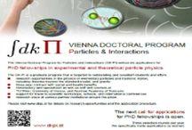 2016 DK-PI PhD Studentship